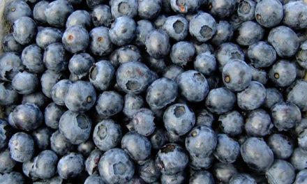 The Lowdown on Antioxidants