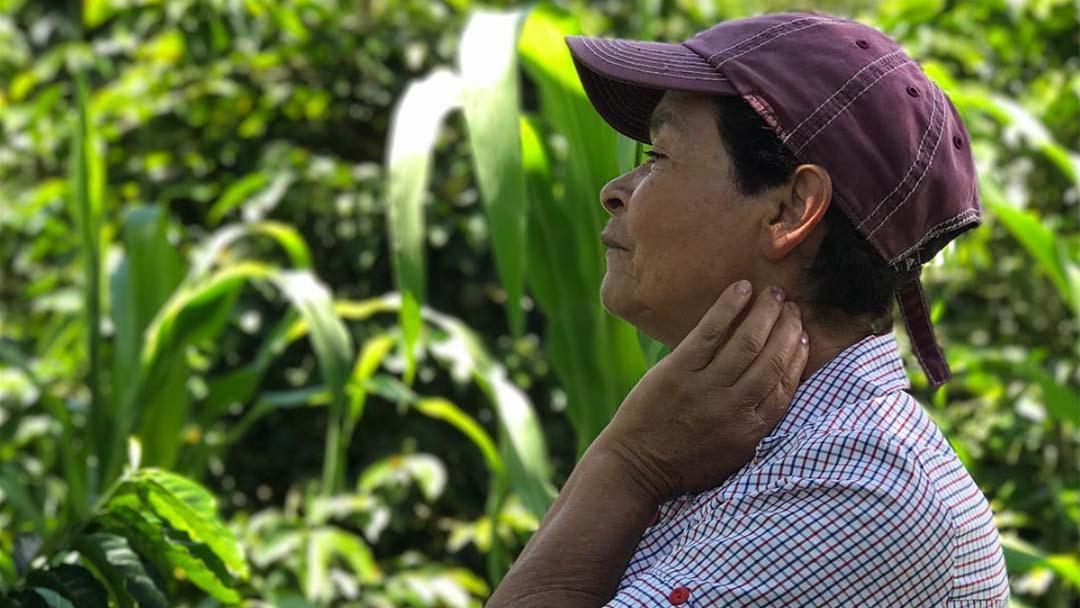 corona-colombia-campesino