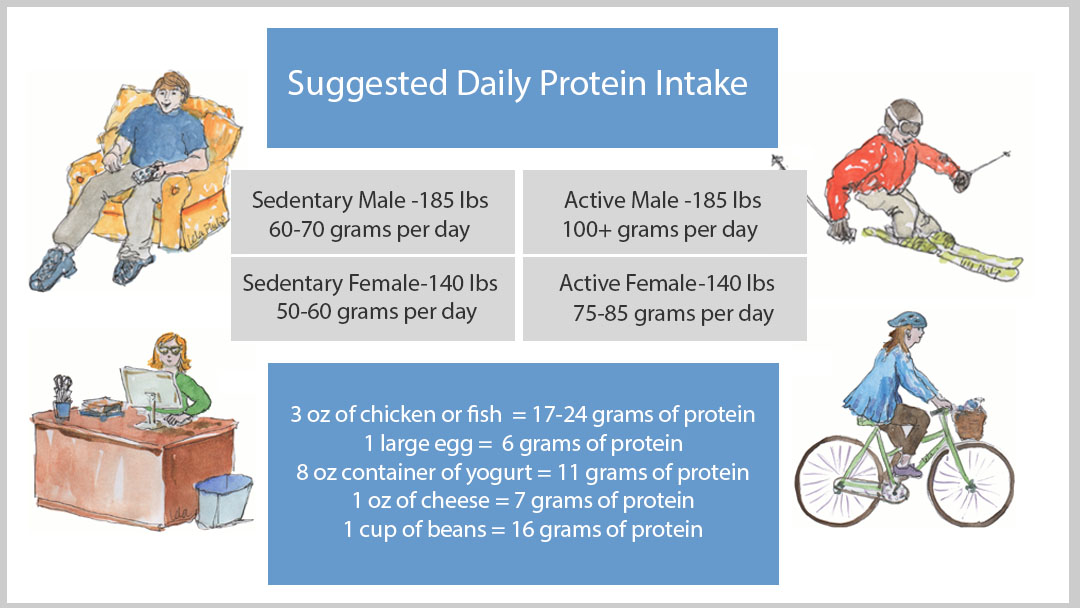 Of Course, If You Exercise More, You Can Increase Your Protein Consumptionu2014  But You ...