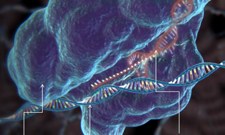 How will CRISPR impact our food?