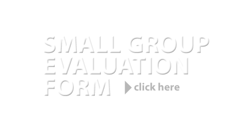 SMALL GROUPS – Small Group Evaluation Form