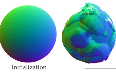 Differentiable Surface Splatting for Point-based Geometry Processing