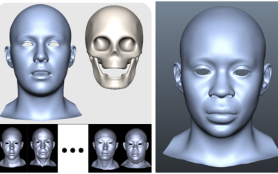 Interactive Sculpting of Digital Faces Using an Anatomical Modeling Paradigm