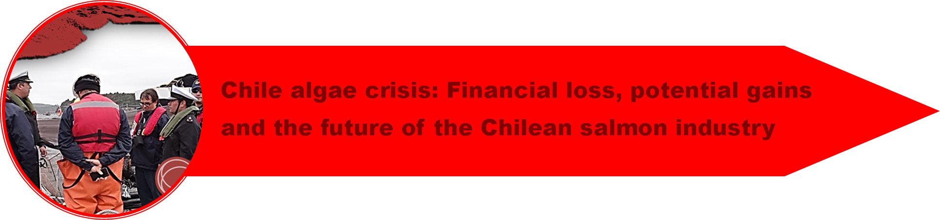 1_Chile_Crisis_4.png