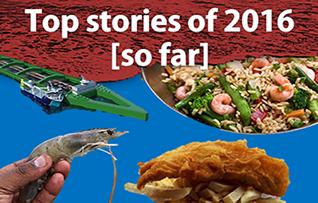 1_Top_2016_stories_318_copy.png