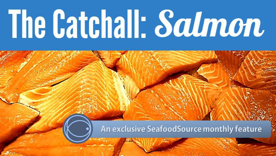 Catchall_Salmon_Banner.jpg