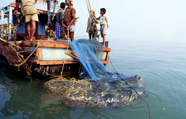 Sri Lanka bans bottom trawling, fishermen in India strike