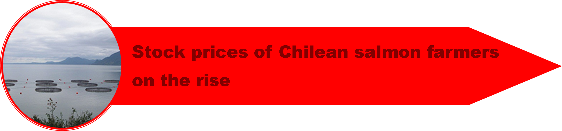 1_Chile_Crisis_3.png