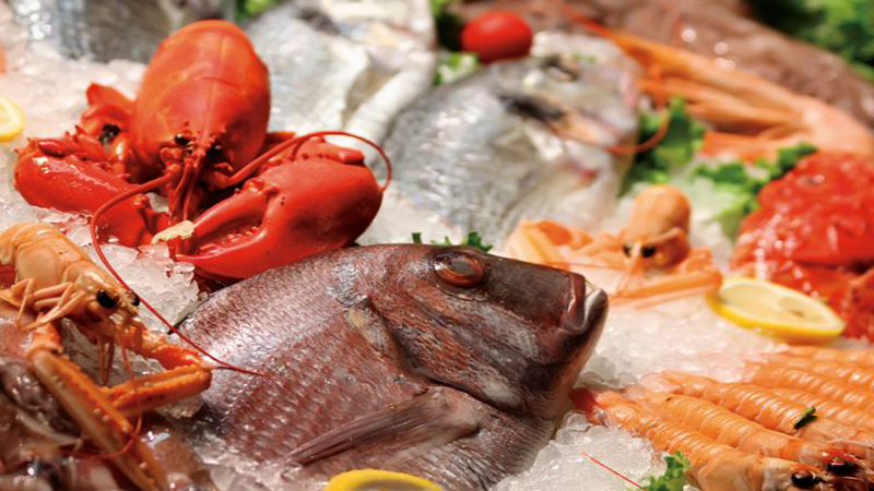 """""""Seeing"""" Seafood: How Traceability Works in the Real World"""