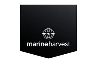Marine Harvest logo New.jpg