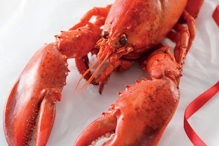 lidl to sell lobsters for under a fiver this christmas - Red Lobster Open On Christmas