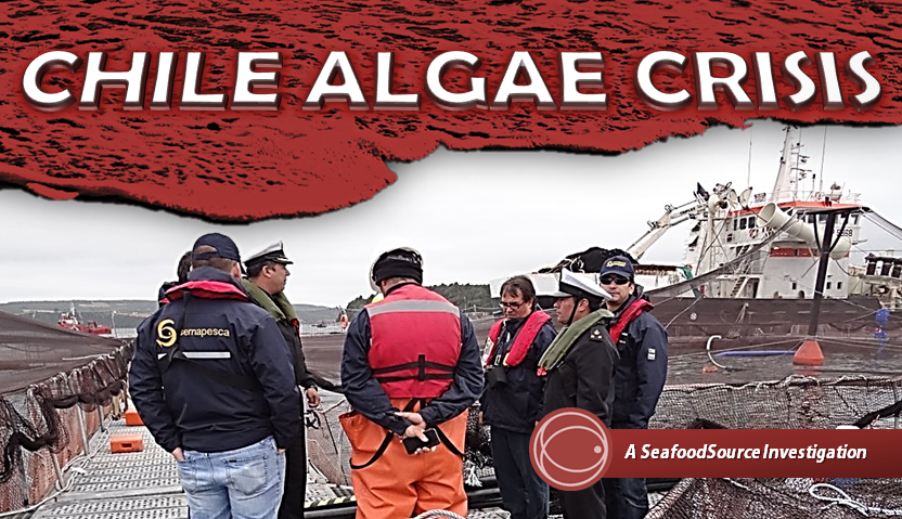 Chile_Algae_Banner.png