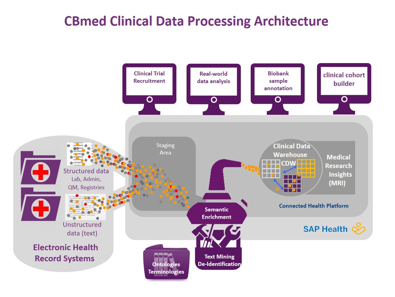 Clinical Data Processing Architecture Graphic
