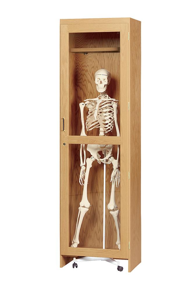Skeleton Cabinet