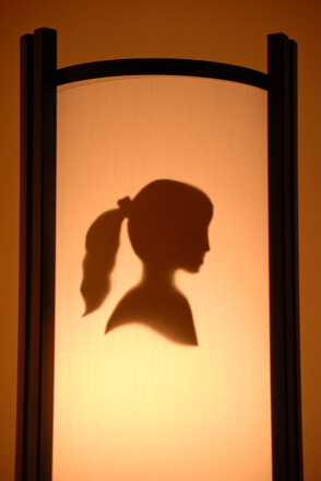 silhouette cameo lampshade craft profile