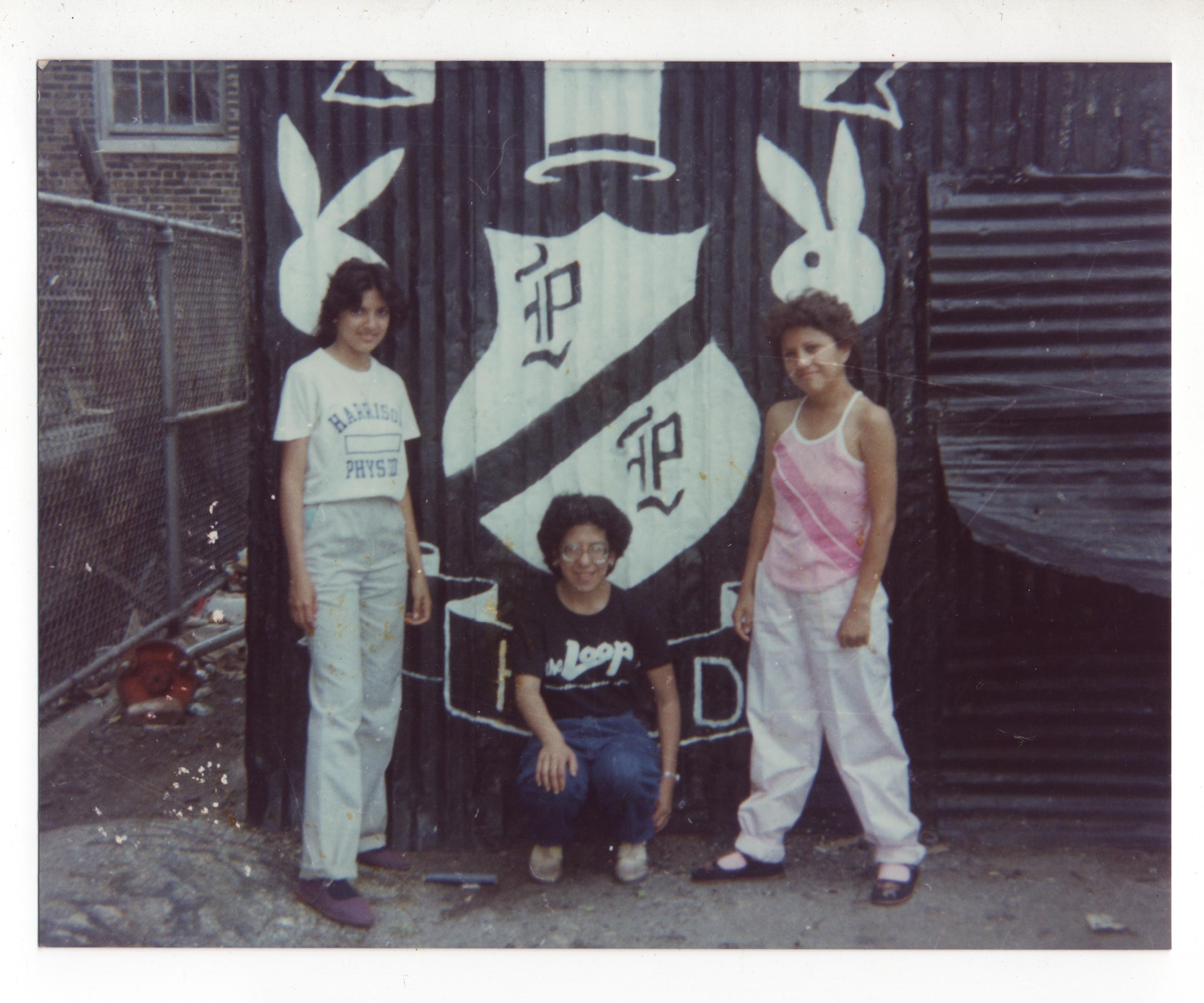 The untold stories of Chicago's tough-as-hell girl gangs, from a woman who lived it all