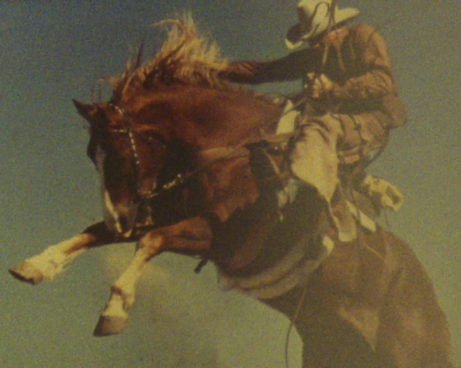 """""""All I needed was a good horse underneath me"""": Inside the world of Ed Forbis, the infamous Marlboro Man"""