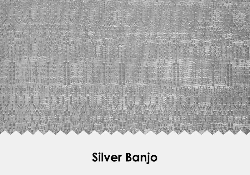 Silver Banjo