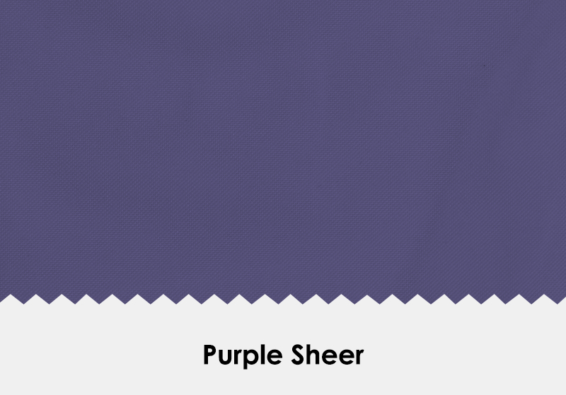 Sheer Purple