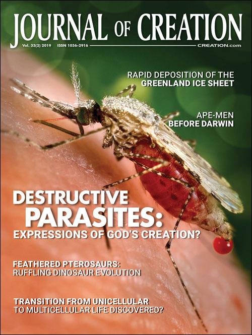 Journal of Creation Volume 33(2) Cover