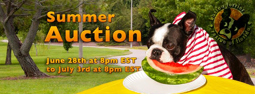 Boston Terrier Rescue Of Florida Summer Auction Donationmatch