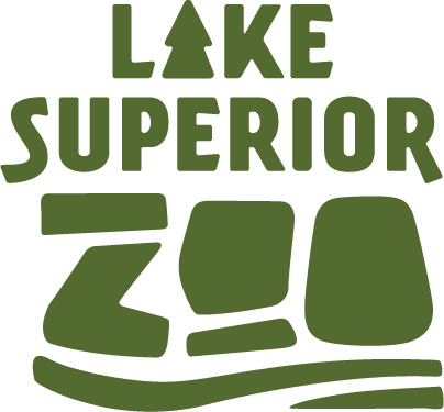 A Night In with the Lake Superior Zoo