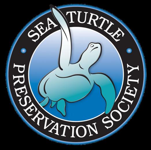 World Sea Turtle Day Celebration
