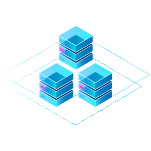 DMP (Data Management Platform)
