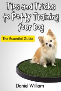 Tips and Tricks to Potty Training Your Dog: The Essential Guide