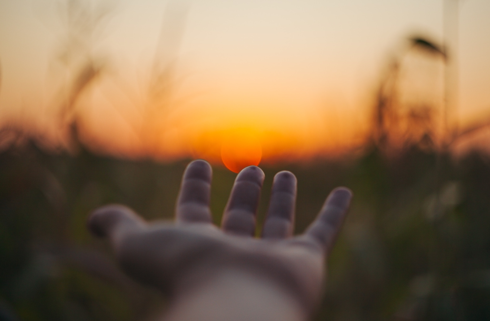 Hand reaching toward the sun