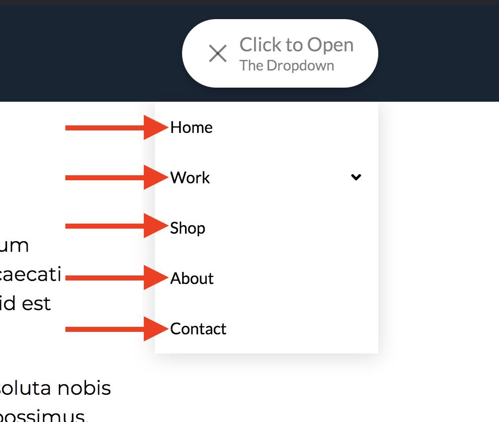 Navigation Dropdown Link Settings