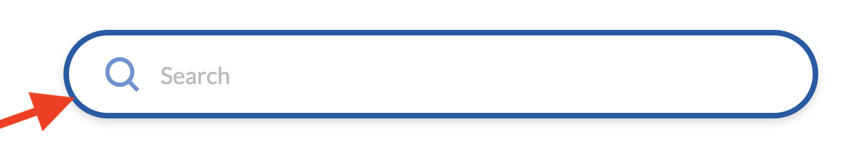 Search Inline Border