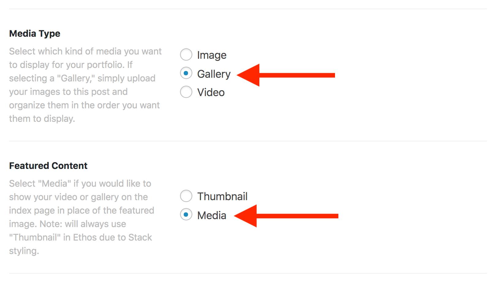 Gallery Media Type
