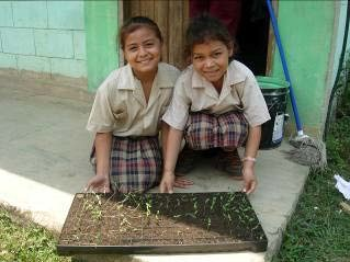Two schoolchildren sit behind a seed tray with small seedlings growing in it