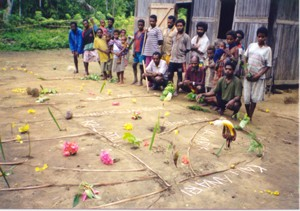 Villagers in West Papua (Indonesia) completed a natural resource map of their tribal lands. The map shows rivers, mountains, and plants and animals of the region. Photo by Laura S. Meitzner.