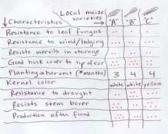 Matrix scoring: farmer evaluations of local maize varieties.