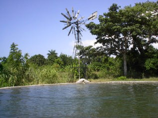 Figure 3. A windmill behind a storage tank that is full of water. Photo by Wayne Niles