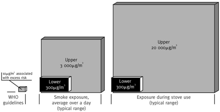 Figure 1: Comparison of typical levels of particles less than 10 micrometers in size in developing country homes (represented by gray and black boxes in middle and on right) with WHO guidelines (small gray box on left). Figure used with permission from ITDG.