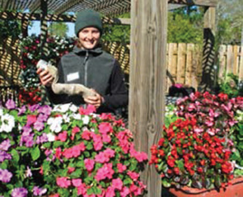 The photo shows cement-mixing trays with a bed of can-filled socks planted with annual flowers (impatiens).