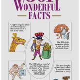 Wonderful facts