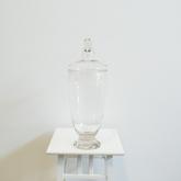 Apothecary jar2