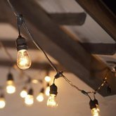 Sting lights