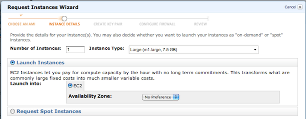 request instances - instance details
