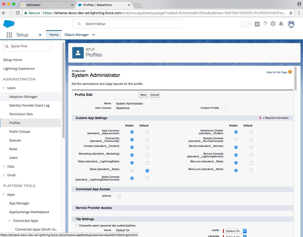 developer salesforce domain edit sysadmin user profile