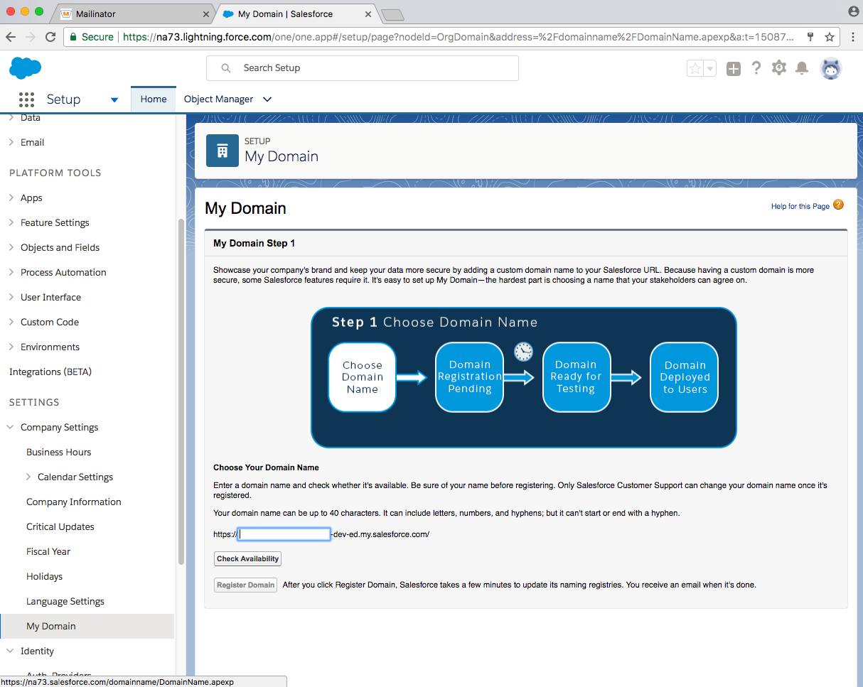 developer salesforce domain page