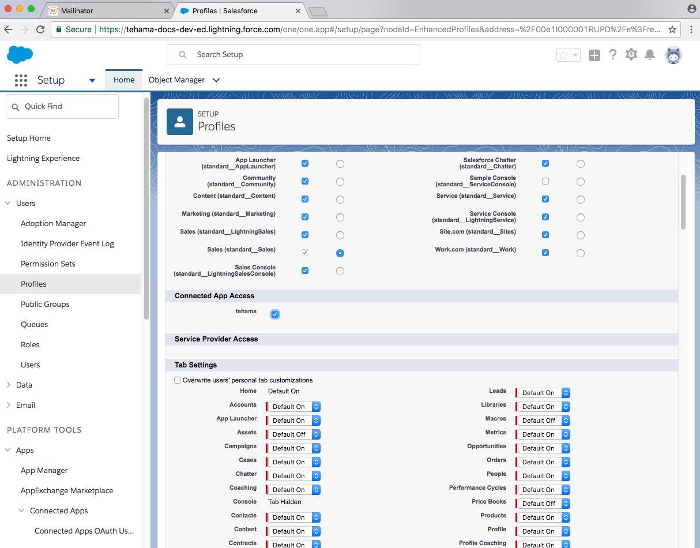 developer salesforce domain sysadmin user access app
