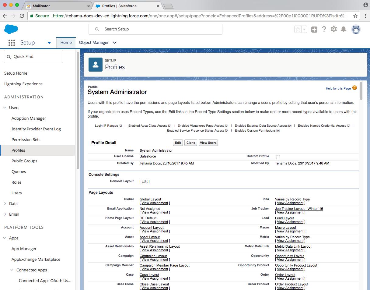 developer salesforce domain sysadmin user profile