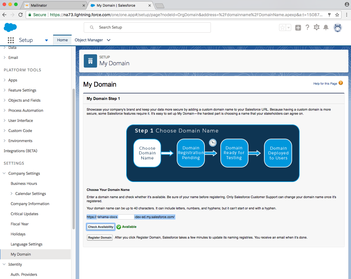 developer salesforce domain page filled out
