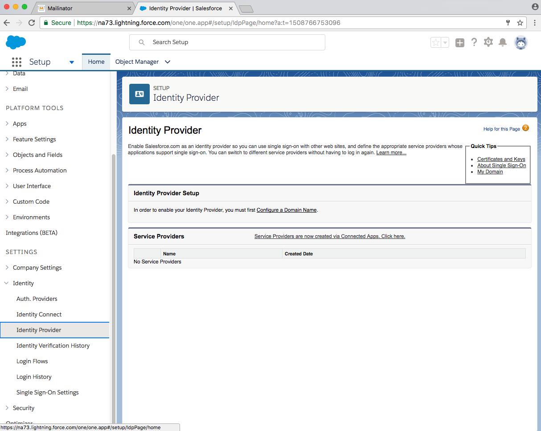 developer salesforce identity provider page