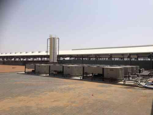Traire 3400 vaches dans le désert : trois systèmes de traite BouMatic au cœur de l'impressionnante exploitation laitière Mazoon en Oman